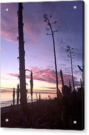 Socal Sunset Acrylic Print