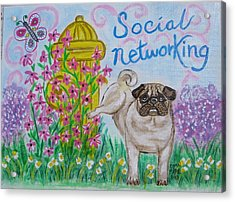 Social Networking Pug Acrylic Print by Diane Pape