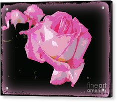 Acrylic Print featuring the photograph Soft And Delicate Pink Rose by Leanne Seymour