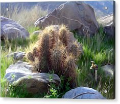 Soft And Sharp Acrylic Print by Snake Jagger