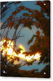 Soft Autumn Dawn Acrylic Print