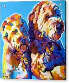 Soft Coated Wheaten Terrier - Max And Maggie Acrylic Print by Alicia VanNoy Call