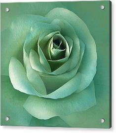 Soft Emerald Green Rose Flower Acrylic Print by Jennie Marie Schell