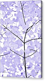 Soft Lavender Leaves Melody Acrylic Print by Jennie Marie Schell
