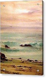 Soft Light Penguin Beach Acrylic Print by Evelyn Antonysen