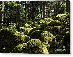Acrylic Print featuring the photograph Soft Mossy Rocks by Kennerth and Birgitta Kullman