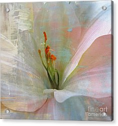 Soft Painted Lily Acrylic Print