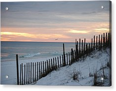Soft Palette Acrylic Print by Michele Kaiser