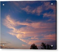 Soft Pink Clouds Acrylic Print by Virginia Forbes