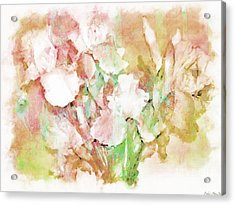 Soft Pink Iris Photo Art Acrylic Print by Debbie Portwood