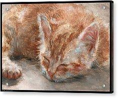 Soft Sleeper Acrylic Print