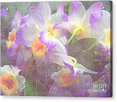 Soft Subtle Orchids Acrylic Print