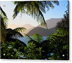 Soft Sun On Hills Through Ferns Acrylic Print