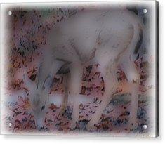 Soft Touch Art 1 Acrylic Print by Debra     Vatalaro