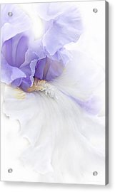 Acrylic Print featuring the photograph Softness Of A Lavender Iris Flower by Jennie Marie Schell