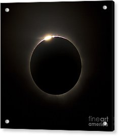 Solar Eclipse With Prominences Acrylic Print by Philip Hart