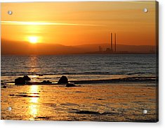 Solar Gold Acrylic Print