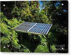 Solar Panel In Jungle Acrylic Print