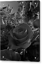 Acrylic Print featuring the photograph Solarized Rose by Scott Kingery