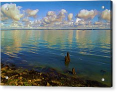Acrylic Print featuring the digital art Solent by Ron Harpham