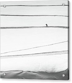 Solitary . . Acrylic Print by Matej Rumansky