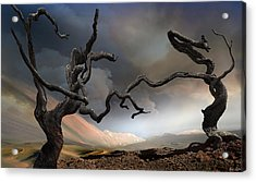 Solitary Together Acrylic Print by Igor Zenin