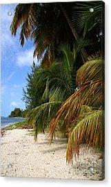 Nude Beach Acrylic Print