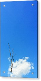 Solitude - Blue Sky Art By Sharon Cummings Acrylic Print