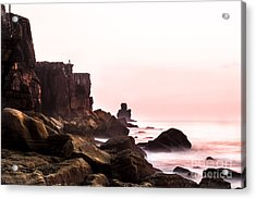 Acrylic Print featuring the photograph Solitude by Edgar Laureano