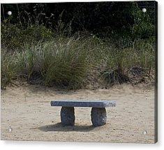 Solitude Acrylic Print by Michael Friedman