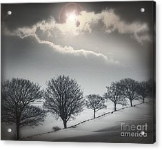 Solitude Of Coldness Acrylic Print