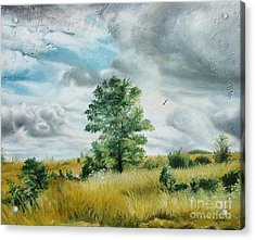 Acrylic Print featuring the painting Solitude by Sorin Apostolescu