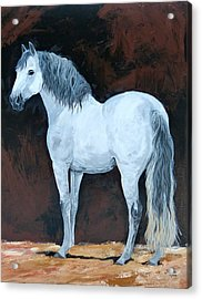 Solo  Means Alone Acrylic Print by Janina  Suuronen