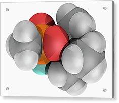 Soman Molecule Acrylic Print by Laguna Design/science Photo Library