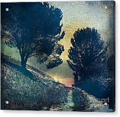 Somber Passage Acrylic Print by Bedros Awak