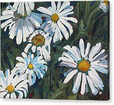 Some Are Daisies Acrylic Print
