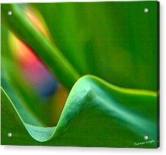 Some Like It Hot Acrylic Print by Theresa Tahara