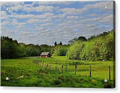 Somers Spring Acrylic Print by Andrea Galiffi
