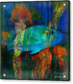 Something Fishy Acrylic Print by Erika Weber