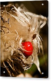 Sometimes Wrong Can Feel So Right Acrylic Print by Liz  Alderdice
