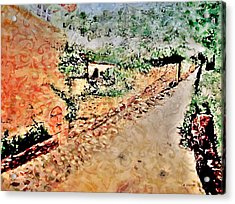 Somewhere In My  Imagination  Acrylic Print by Rick Todaro