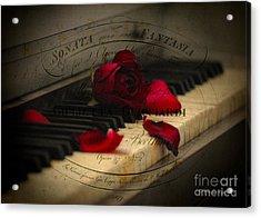 Sonata In Roses Acrylic Print