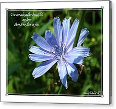 Song Of Solomon 4 Verse 7 Acrylic Print by Sara  Raber
