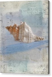 Songs Of The Sea Acrylic Print by Betty LaRue