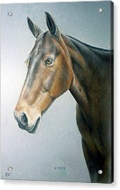 Acrylic Print featuring the painting Sonny by Rosemary Colyer