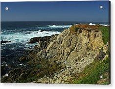Sonoma Coast 1 Acrylic Print