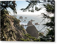Sonoma Coast 2.2795 Acrylic Print by Stephen Parker