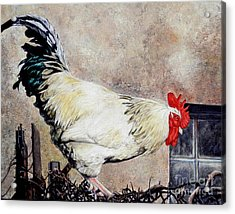 Sonoma Rooster Acrylic Print by Amanda Hukill