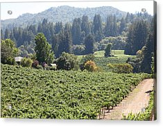 Sonoma Vineyards In The Sonoma California Wine Country 5d24585 Acrylic Print by Wingsdomain Art and Photography