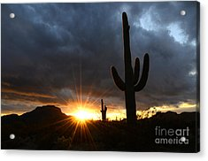Sonoran Desert Rays Of Hope Acrylic Print by Bob Christopher